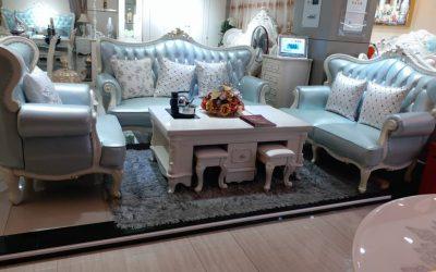 Executive Sofa #3